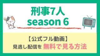 刑事7人 season6